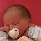 Babys: Senken Sie das Allergierisiko mit HA-Milch